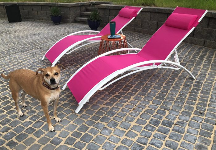 Hot pink outdoor lounge chairs from Wayfair